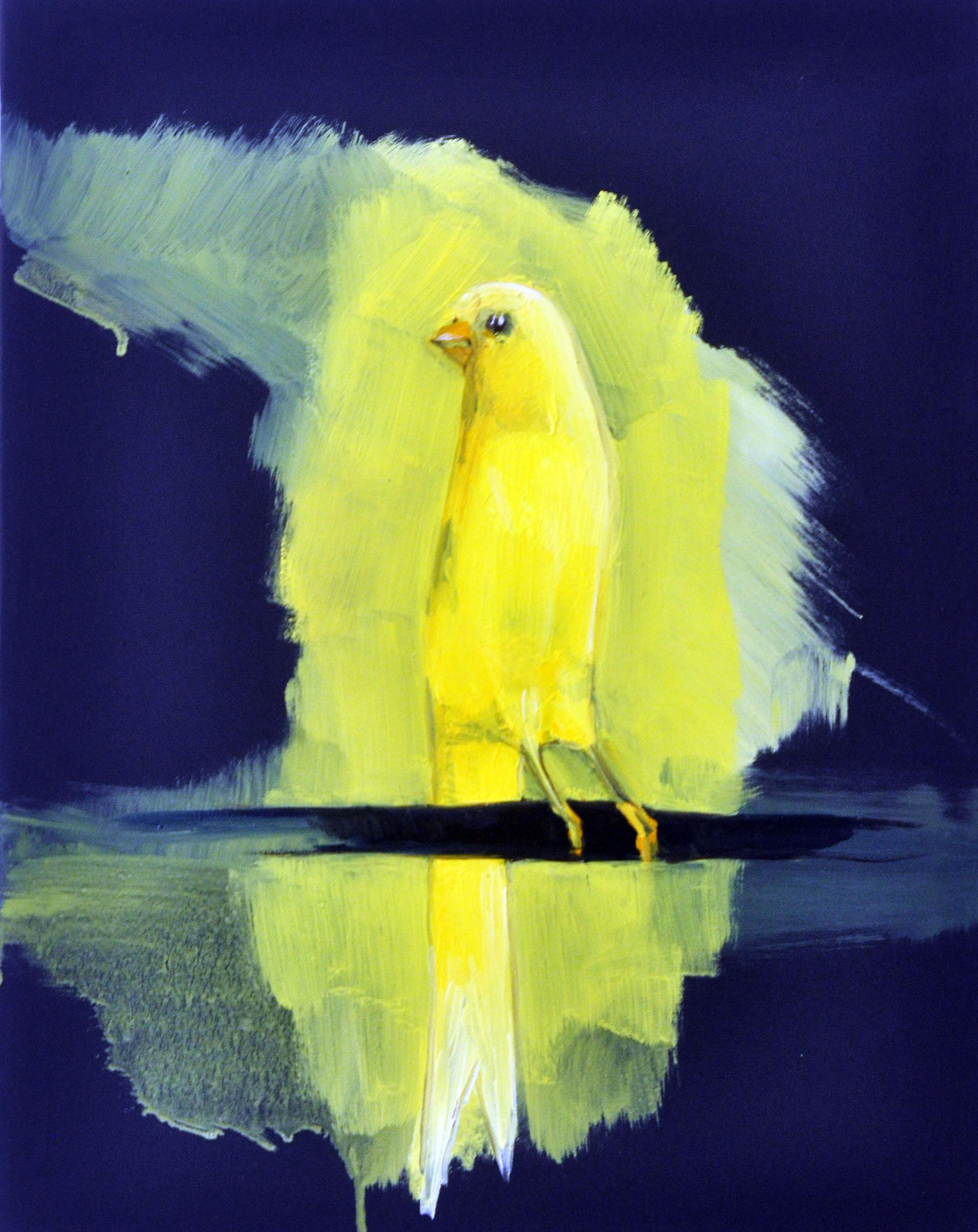 Canarino- Songbird