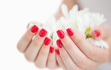 manicured-hands-holding-flowers_13339-13