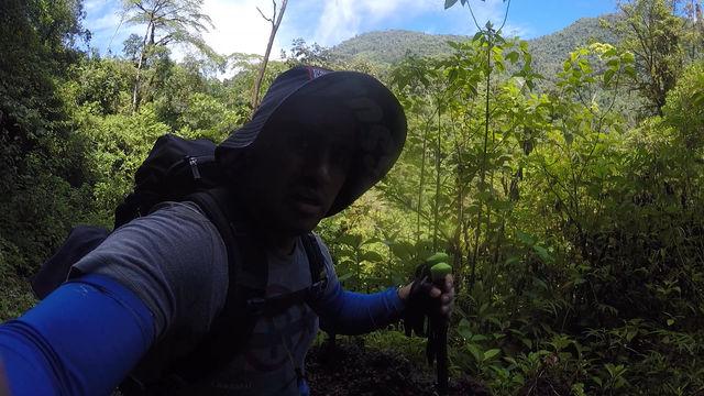 Ruta Sukia - 2-3er Dia, Reserva Forestal Los Santos, San Isidro de Dota, Camino a Quepos