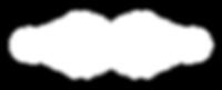 002B SSE Full Logo Only Symbol White Tra