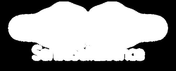 002Β_SSE_Full_Logo_White_Transparent.png