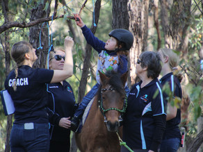 Hippotherapy Workshop