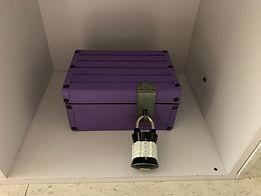 purple box.jpg