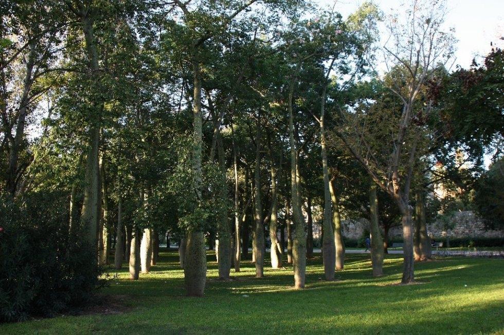 Jardins du turia3