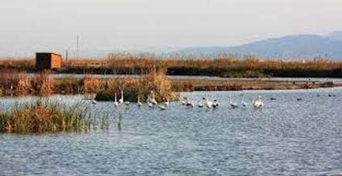 La ALBUFERA DE VALENCIA - Le lac et la réserve d'oiseaux
