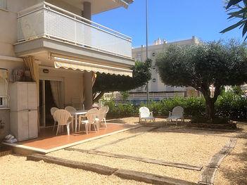 Coin terrasse - l'olivier