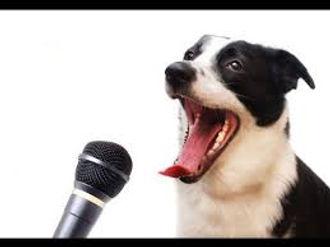 dog talking.jpg