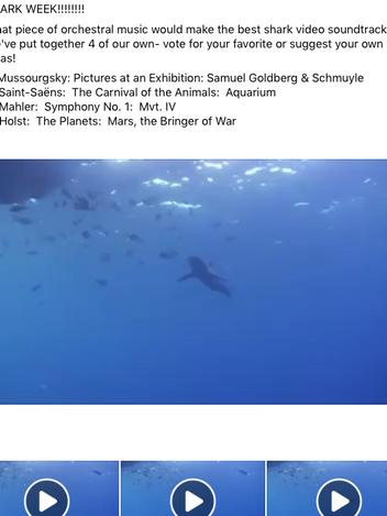 BSO Passport Shark Week Post
