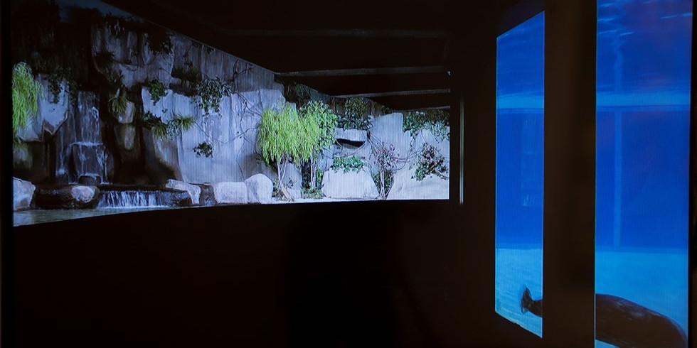 ביומה   מפגש עם האמנית קרן גלר