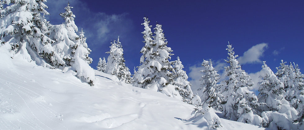 Panoramafaltkarte Schneeladschaft