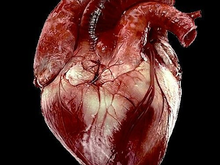 Acupuncture, Depression and Coronary Heart Disease