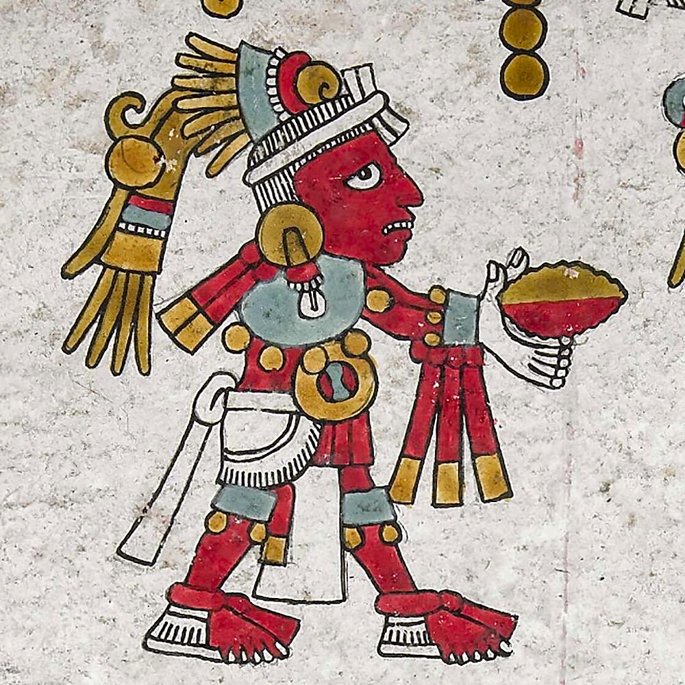 Подношение какао. Кодекс Nuttall. Коллекция British Museum.