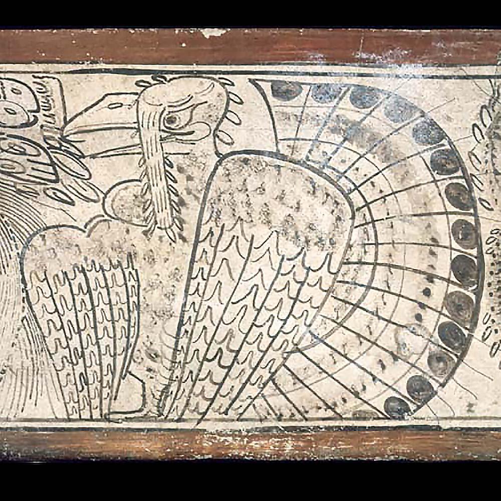Индейка. Фрагмент изображения на сосуде. Публикация Maya Book of the Dead, Vessel 69. Painting the Maya Universe. Фотограф Justin Kerr. Источник Mayavase.com.