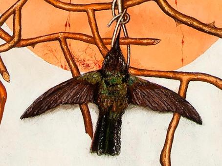 Колибри: что общего у маленькой птички с войной и кровью