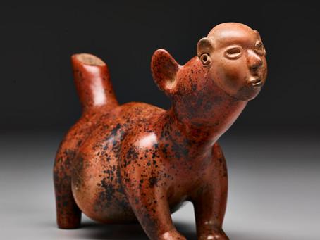 Собака в маске с лицом человека: древняя мексиканская легенда