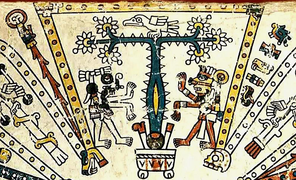 Север. Фрагмент кодекса Фейервари-Майера. Ацтеки. Коллекция World Museum, Ливерпуль.