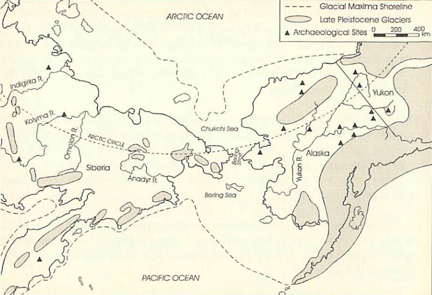 """Очертания Берингии в ледниковый период. """"Beringia"""", Richard E. Morlan, Canadian Museum of Civilization. Beringian Research Notes, December, 1996."""