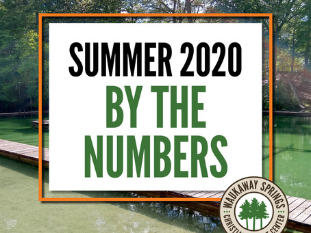 Summer 2020 By the Numbers