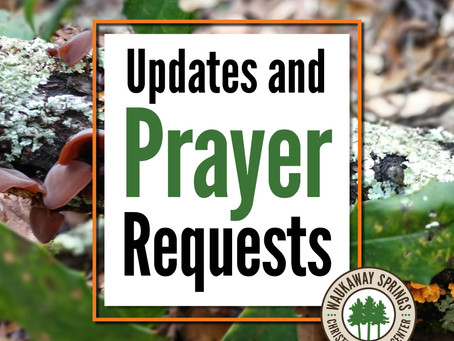 Updates and Prayer Requests