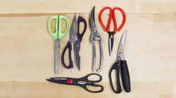 Shears Scissors.jpg