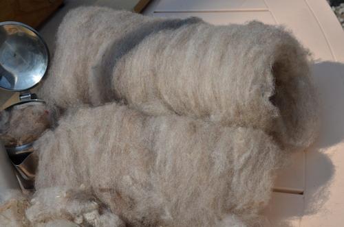 Подготовка шерсти от руна