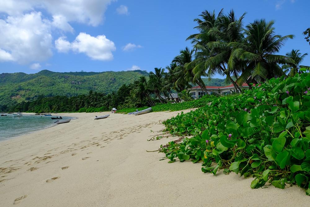 Anse Royale Beach