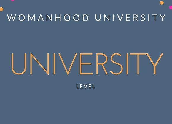 University Level