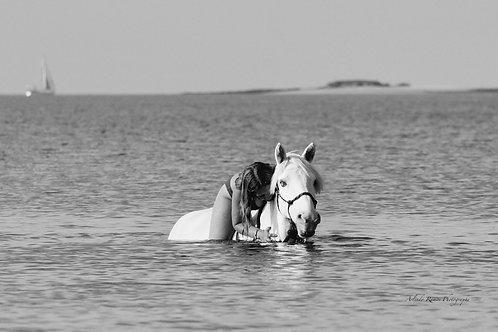 Balade à cheval dans l'eau 75x50cm Série limitée à 57 Exemplaires