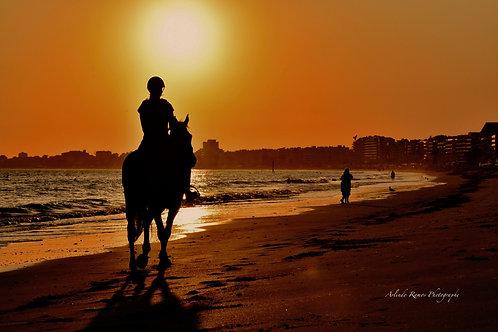 Photo Balade à Cheval au coucher de soleil support Alu/Dibond Dimensions 90X60