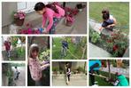 За чистије и зеленије двориште