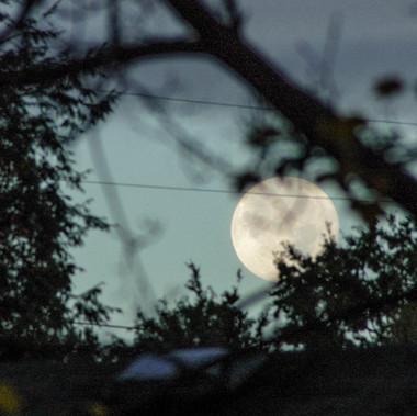 soles-image-moon-3-workshop.jpg