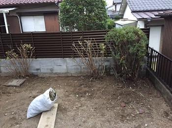 低い植木と土の庭