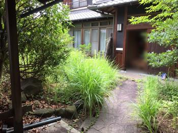 雑草対策前の草が茂る庭
