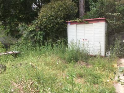 リフォーム前の草だらけの裏庭