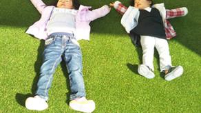 庭の雑草対策をして家族との時間を増やす5つの方法!現役庭師が本音で語る!