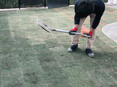 芝生を転圧する男性