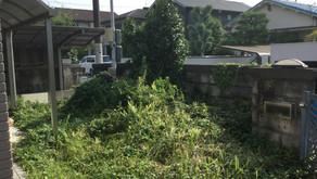 【準備編】防草シートを使ってDIYで雑草対策をする方法