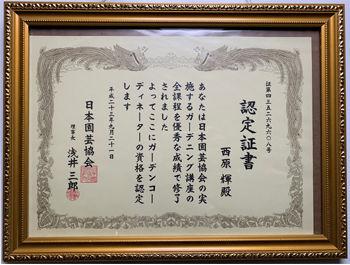 certificate-of-merit.jpg
