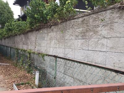 ブロック塀に蔓延るツタ撤去後jpg