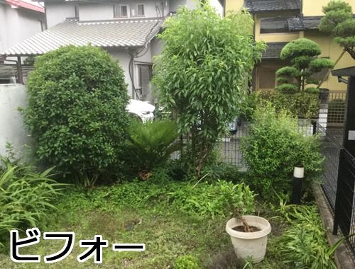草が茂る庭