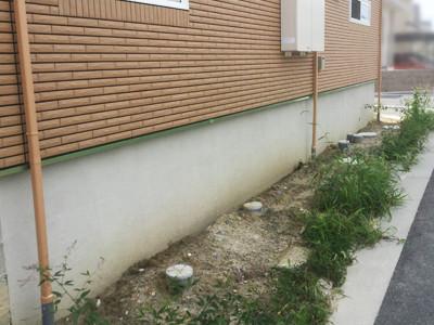 新築外構工事前の草が茂る