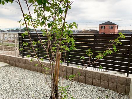 目隠しフェンスの取付けと植栽工事【奈良県香芝市|S様邸】