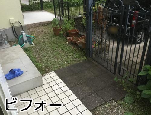 草が生える庭