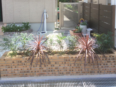 花壇低木植栽