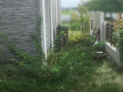 工事前の草だらけの庭