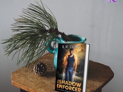 The Shadow Enforcer – A Review