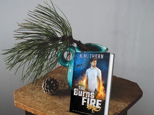 The Burns Fire - A Review
