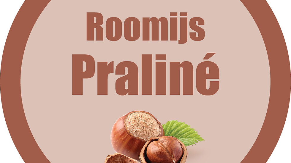 Roomijs praliné (900ml)