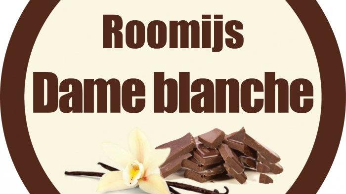 Roomijs dame blanche (900ml)