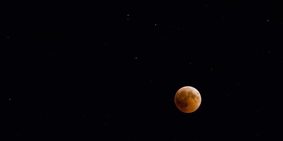 לילה של ירח מאוהב